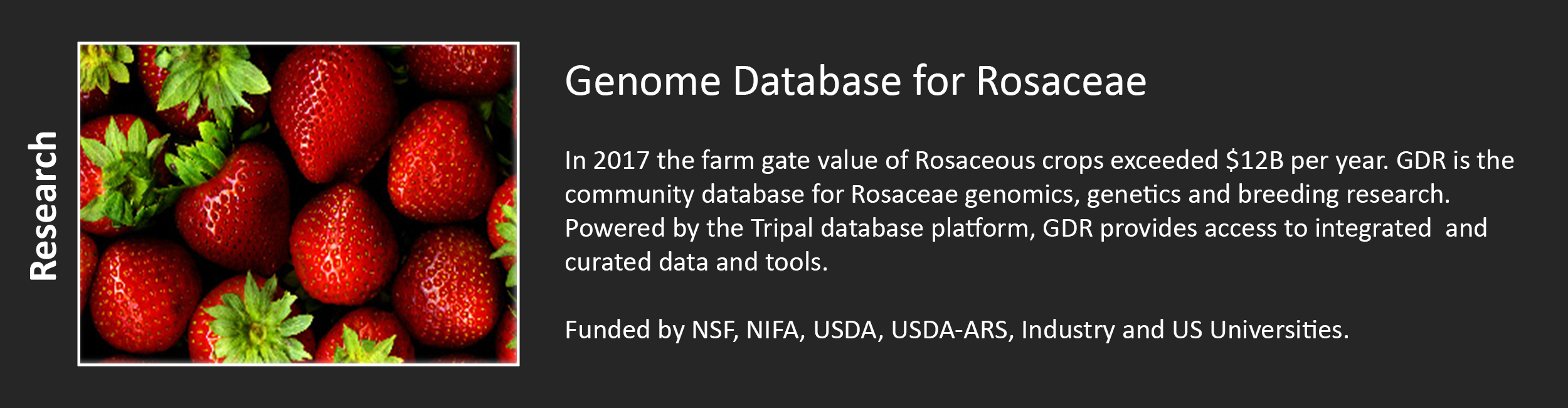 Genome Database for Rosaceae