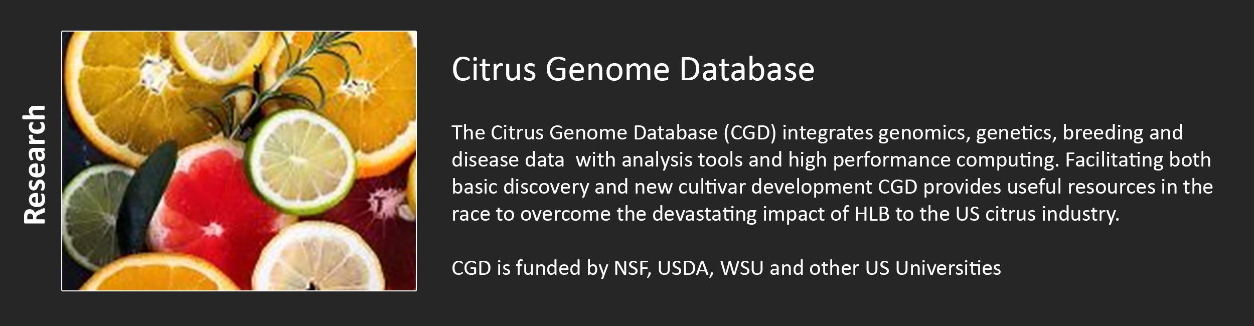 Citrus Genome Database