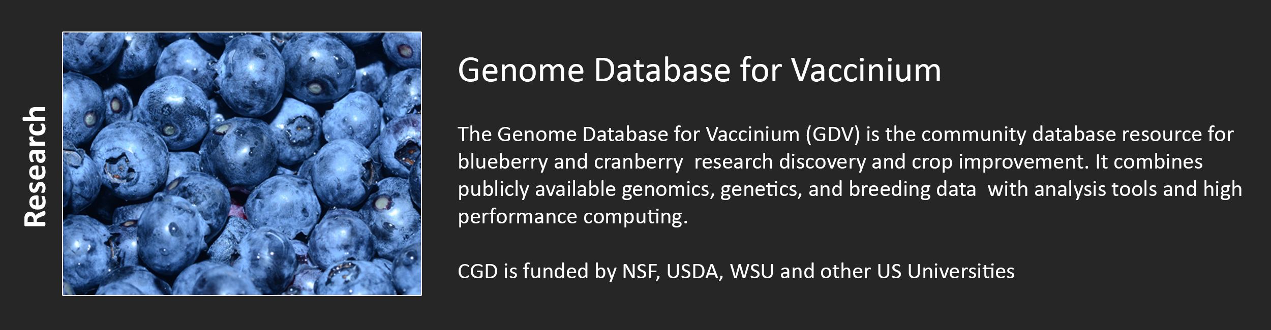 Genome Database for Vaccinium